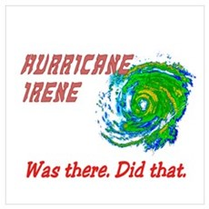 Hurricane Irene Was There Wall Art Poster