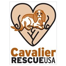 Cavalier Rescue USA Logo Wall Art Framed Print