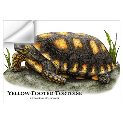 Yellow-Footed Tortoise Wall Art Wall Decal