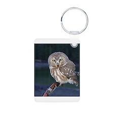 Saw-whet Owl Keychains