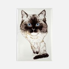 Ragdoll Caricature Rectangle Magnet