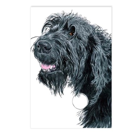 Smiling Labradoodle Postcards (Package of 8)