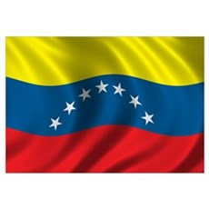 Flag of Venezuela Wall Art Framed Print