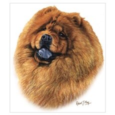 Chow Chow Wall Art Canvas Art