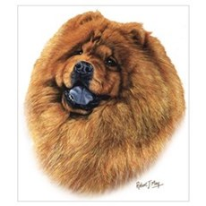 Chow Chow Wall Art Poster