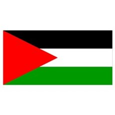 Flag of Palestine Wall Art Poster