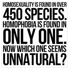 Homosexuality In 450 Species Wall Art Canvas Art