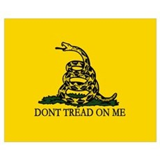 Dont Tread on Me Wall Art Framed Print