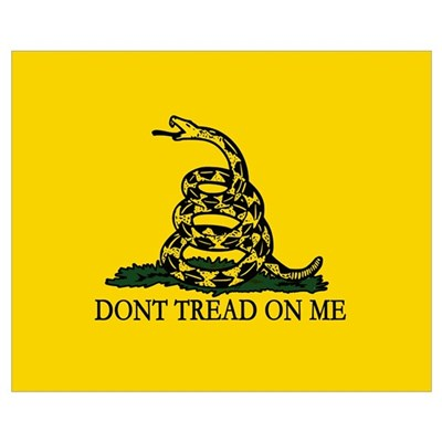 Dont Tread on Me Wall Art Poster