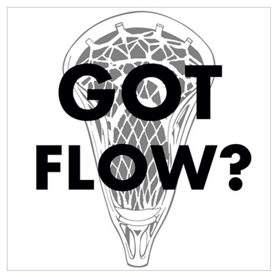 Got Flow? Wall Art Poster