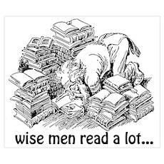 Wise Men Read A Lot Wall Art Poster