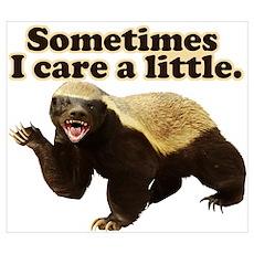 Honey Badger Sometimes I Care Wall Art Poster