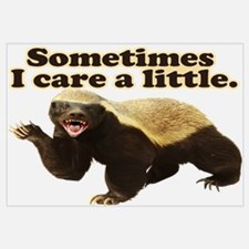 Honey Badger Sometimes I Care Wall Art