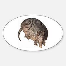 Armadillo Sticker (Oval)