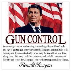 Gun Control Wall Art Poster
