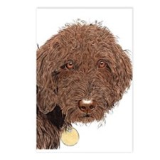 Chocolate Labradoodle 2 Postcards (Package of 8)