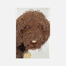 Chocolate Labradoodle 2 Rectangle Magnet