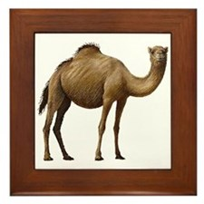 Camel Framed Tile