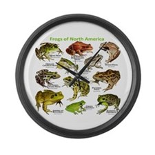 Frogs of North America Large Wall Clock