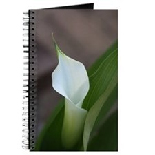 CalaLily Journal