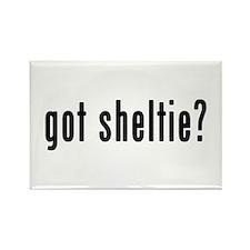 GOT SHELTIE Rectangle Magnet (10 pack)