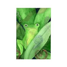Frogs Rectangle Magnet