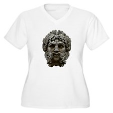 Great Stone Face T-Shirt