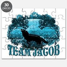 Team Jacob Puzzle