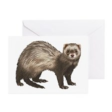 Ferret Greeting Cards (Pk of 10)