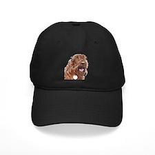 Chocolate Labradoodle3 Baseball Hat