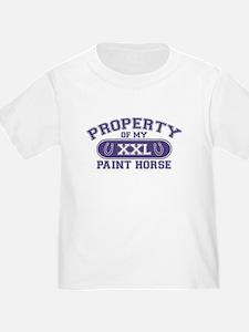 Paint Horse PROPERTY T