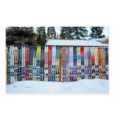 Mary Kenez presents - Telluride Ski Fence