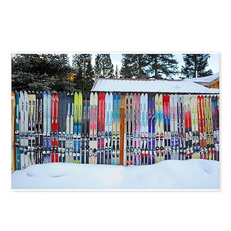 Mary Kenez presents - Telluride Ski Fence