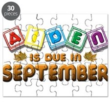 Aiden is Due in September Puzzle