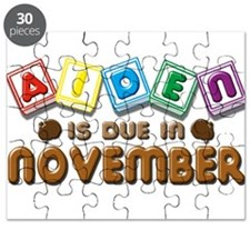 Aiden is Due in November Puzzle