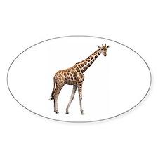 Giraffe Decal