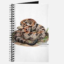 Timber or Canebrake Rattlesnake Journal