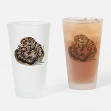 Timber or Canebrake Rattlesnake Drinking Glass