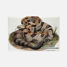 Timber or Canebrake Rattlesnake Rectangle Magnet