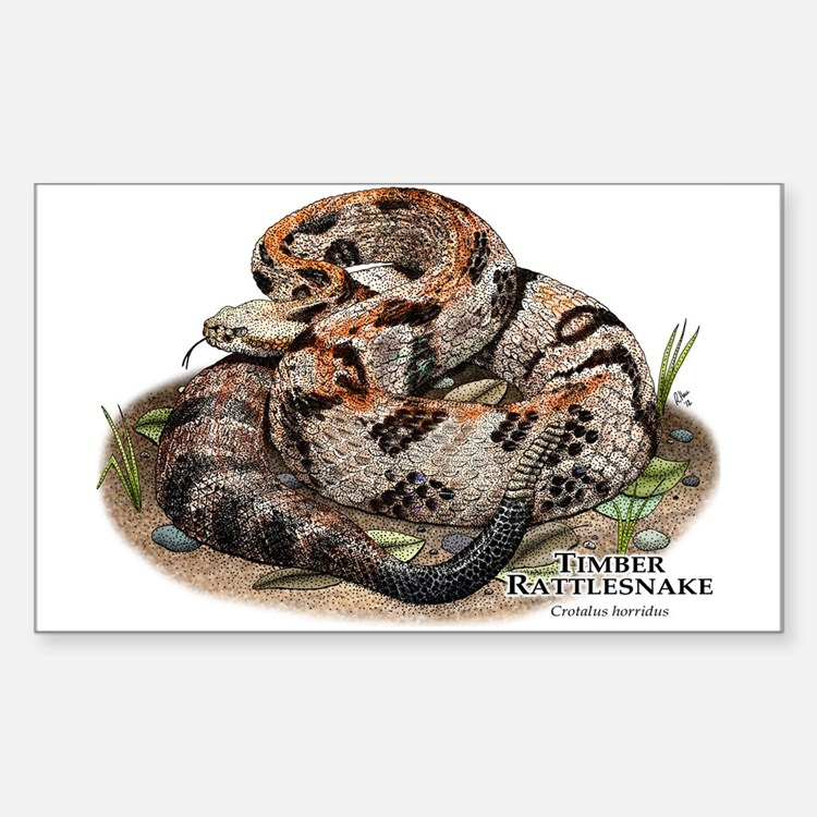 Timber or Canebrake Rattlesnake Decal
