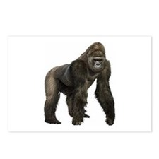 Gorilla Postcards (Package of 8)