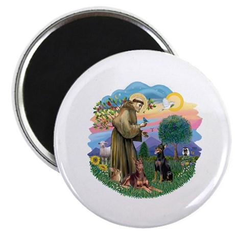 StFrancis(ff)-Two Dobies Magnet