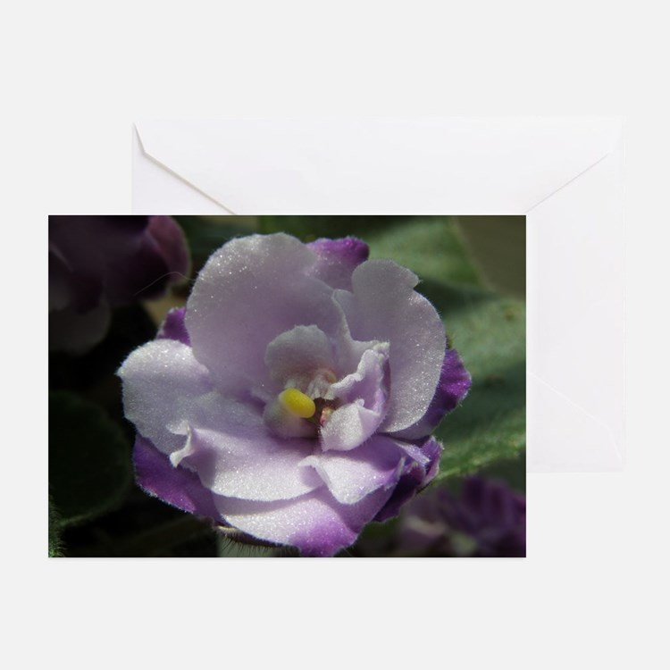 African Violet #02 Greeting Cards (Pk of 10)