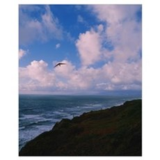 Hang glider over pacific ocean, San Francisco, Cal Framed Print