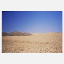 Silo in a wheat field, Palouse Country, Washington