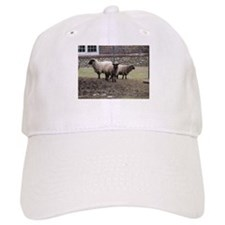 Sheep Trinity Baseball Cap