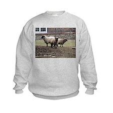 Sheep Trinity Sweatshirt
