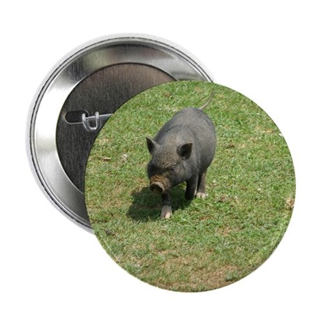 """Pot Bellied Pig 2.25"""" Button (10 pack)"""