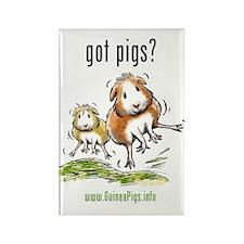 Unique Guinea pig Rectangle Magnet (10 pack)