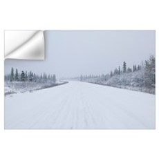 Highway passing through a snow covered landscape, Wall Decal